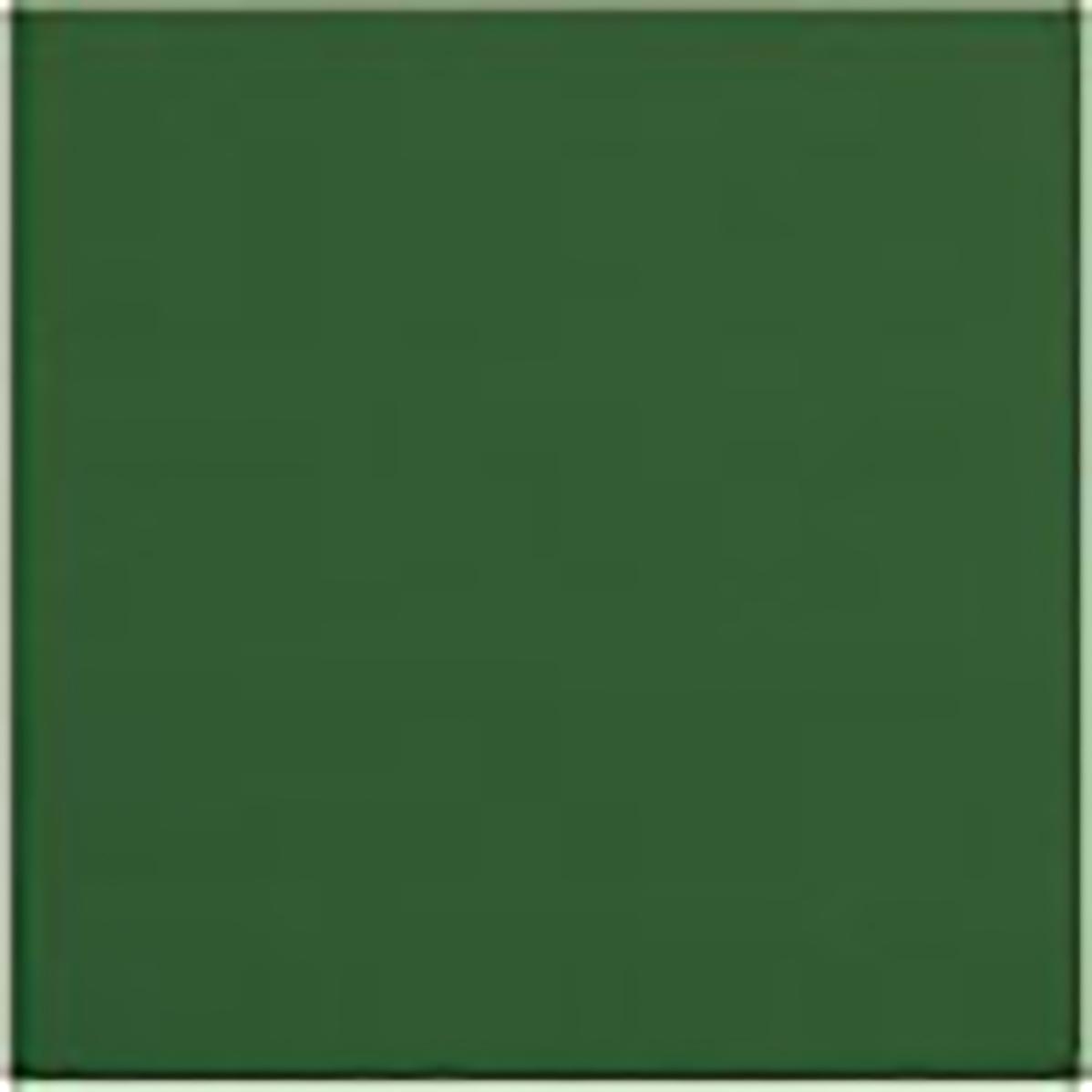 Sigma Verde Botella 20 x 20